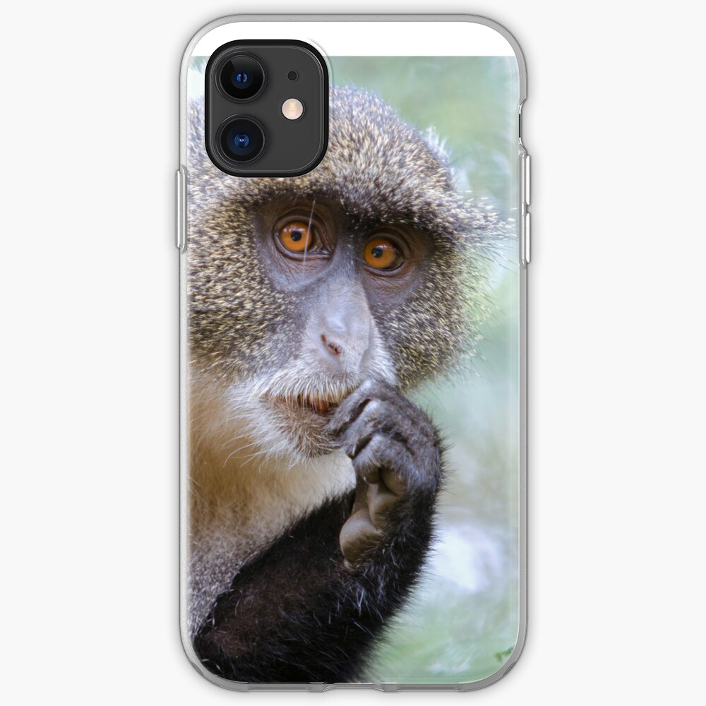 Sykes Monkey iPhone cover iPhone Case & Cover