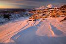 Mt Ngauruhoe not in Cloud  by Michael Treloar