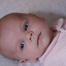 Indiana 6 weeks old by Belinda Fletcher