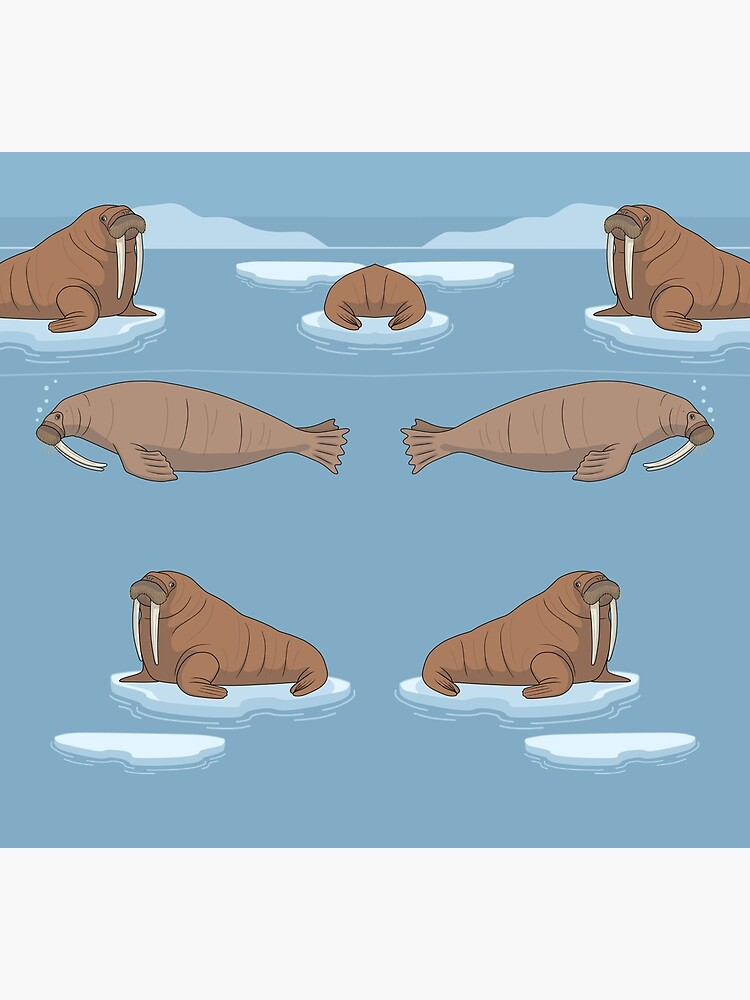 Pacific Walrus by ArtByBreah