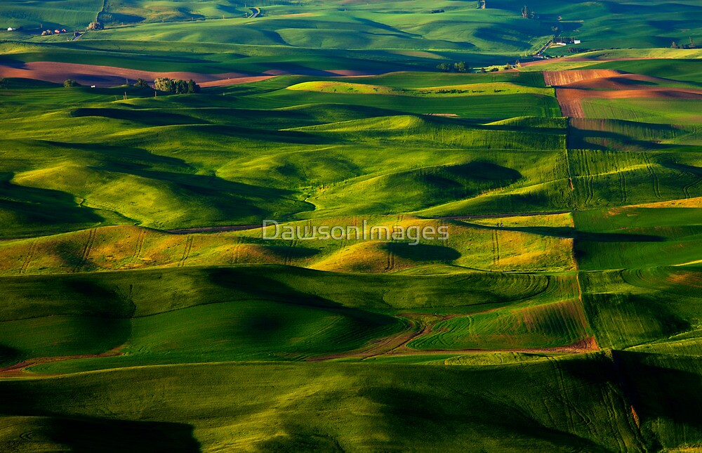 Furrows and Folds by DawsonImages