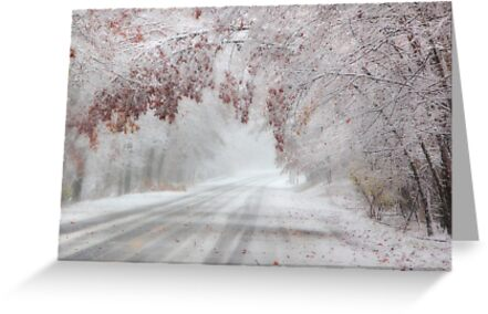 I'm Dreaming of a White Autumn by Lori Deiter