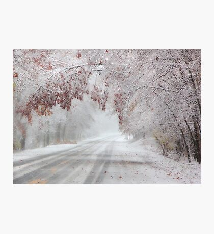 I'm Dreaming of a White Autumn Photographic Print