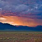 Rain Storm - Cherry Creek, Nevada by Sue Ratcliffe