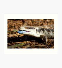 australia reptile Art Print