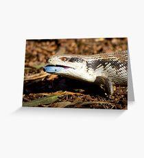 australia reptile Greeting Card