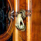 Door Knocker by John Pitman