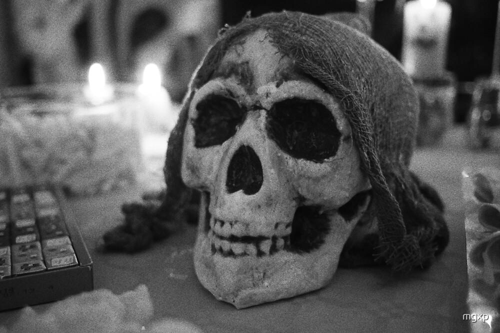 Grainy Skull by mgxp