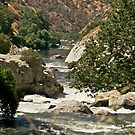 A River Runs Through It.... by Helen Vercoe