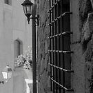 Window Bars by James2001