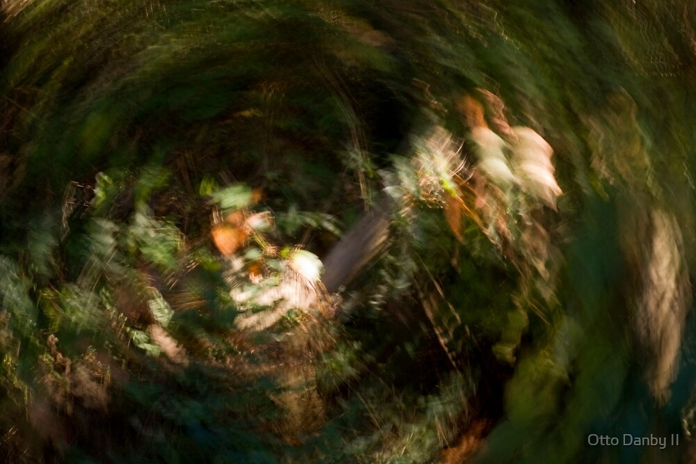 Down the Rabbit Hole by Otto Danby II