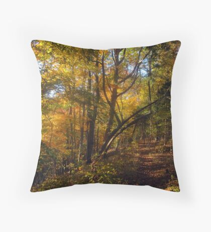 A Quick Autumn Hike Throw Pillow