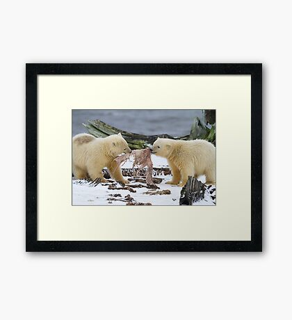 Tug-O-War Framed Print