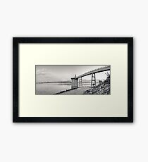 The Crane Framed Print