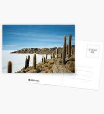 Ancient Cactus - Salar de Uyuni, Bolivia Postcards