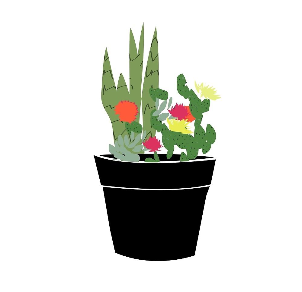 Cactus party!!! by catlavoie