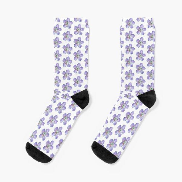 Purple Phlox Socks