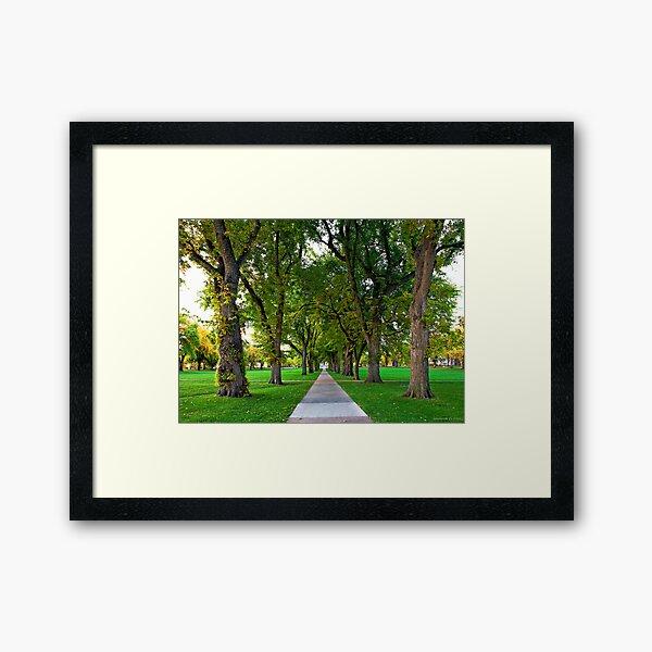 The Oval Framed Art Print