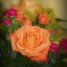 Die orange Rose von jeanlphotos