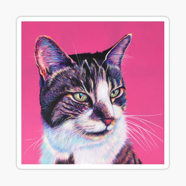 Tabby & White on Pink Sticker
