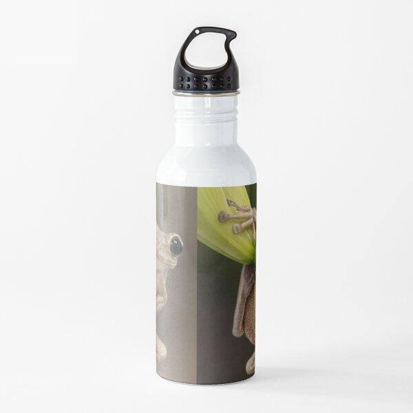 Happy Cuban tree frog Water Bottle