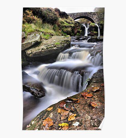 Autumn Flow 2 Poster