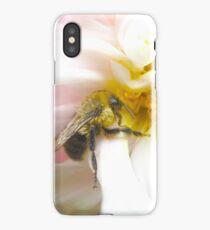 Dessert iPhone Case/Skin