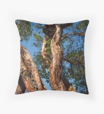 Spies like us Throw Pillow