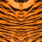 Tiger Stripes by DerBen