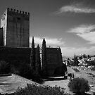Alcazaba, Ahlambra by Peter  Thomas