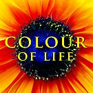 Colour of Life [cover image] by Damienne Bingham