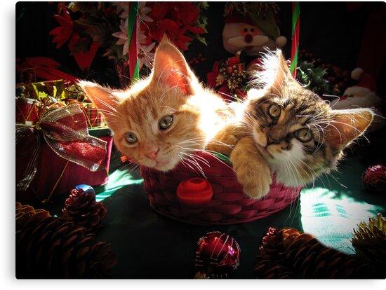 Lienzos Canasta De Navidad De Dos Gatitos Enamorados Retratos De