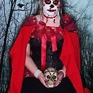 Raven Heart by Jessica Hooper