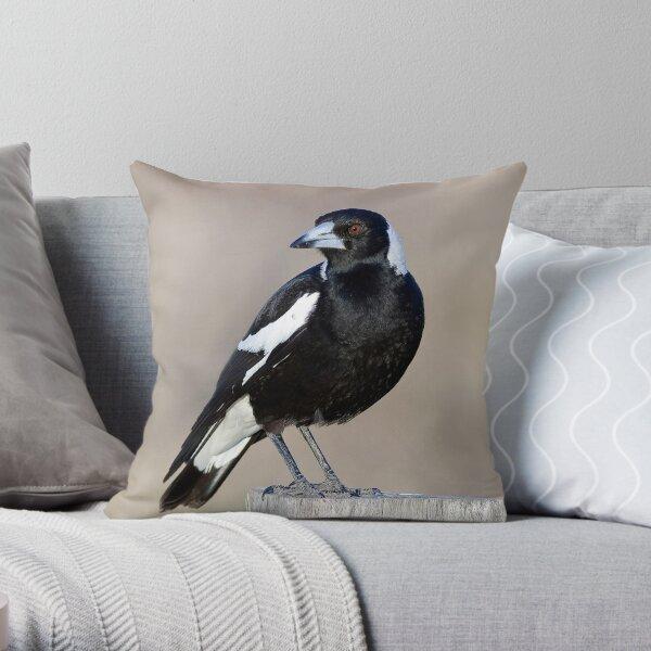 Australian Magpie Pillows Cushions Redbubble