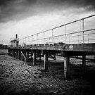 Dry Pier by Steven Cliff