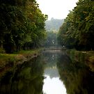Canal Canopy by Frank Bibbins