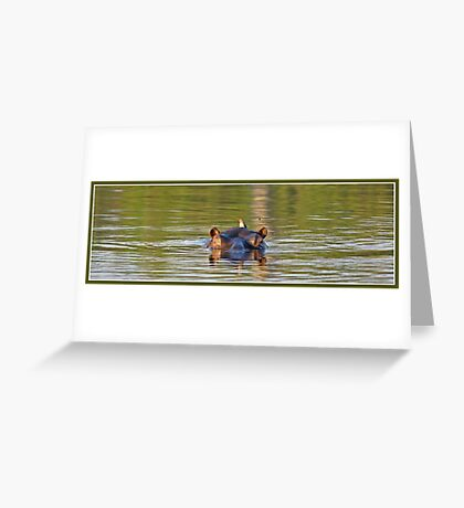 Green hippopotamus Greeting Card