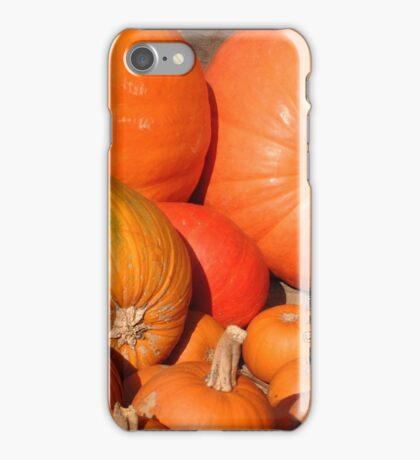 November's Bounty iPhone Case/Skin