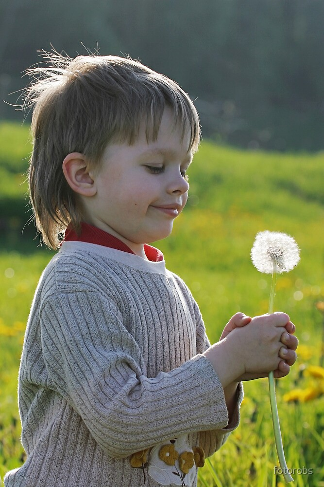 Boy in dandelion meadow. by fotorobs