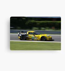 ALMS 2011 LRP Corvette Canvas Print