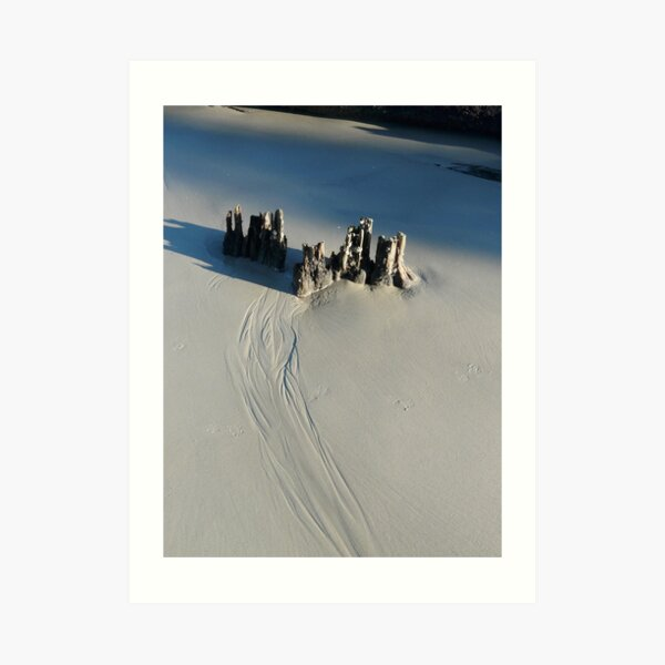 Camelot castle on the beach in South Carolina Art Print