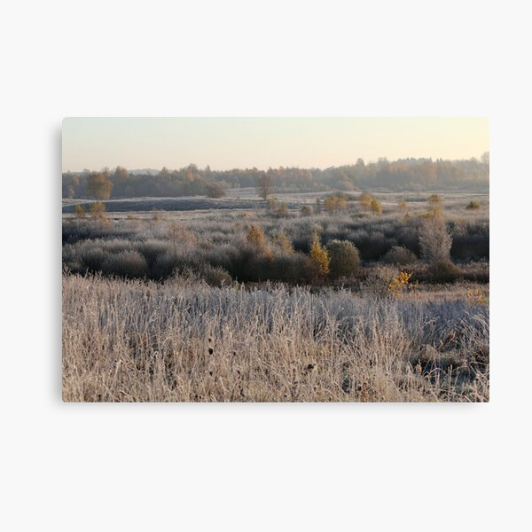 First frost in grassland Canvas Print