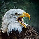 The Eagles Cry by Brian Tarr