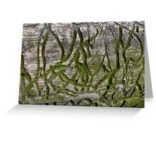 Moss Tunnels on Driftwood Greeting Card