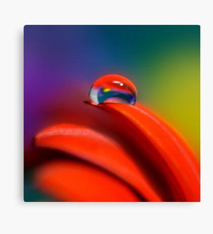 Colour Of Life XXI [Print & iPad Case] Canvas Print
