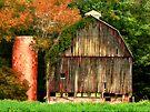 Hocking Hills old barn  by Marcia Rubin