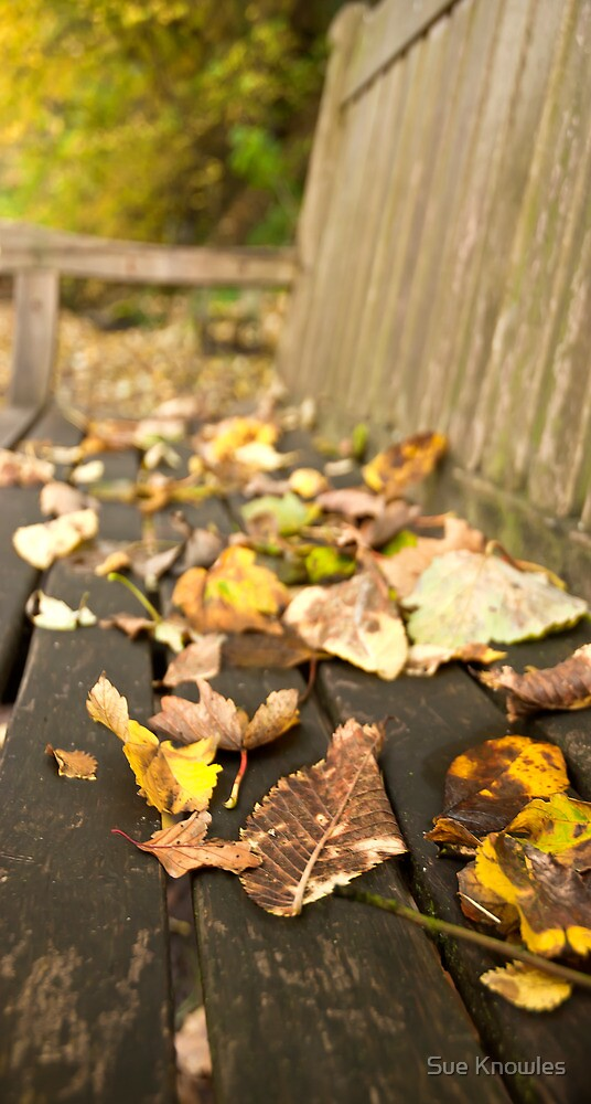 Even Leaves Know When to Rest by Sue Knowles
