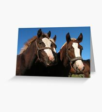 Blackforest Coldblood Youngsters Greeting Card