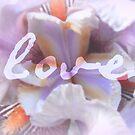 love by Floralynne