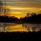 Sunrise over the Pond - AB Canada by Jessica Chirino Karran